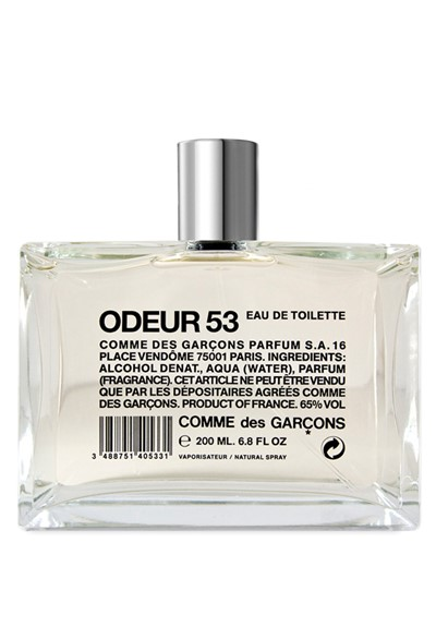 odeur 53 eau de toilette by comme des garcons luckyscent. Black Bedroom Furniture Sets. Home Design Ideas