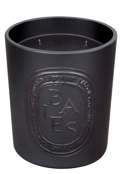 Baies Large Ceramic Candle  Scented Candle  by Diptyque