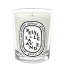 Feuille de Lavande Candle by Diptyque