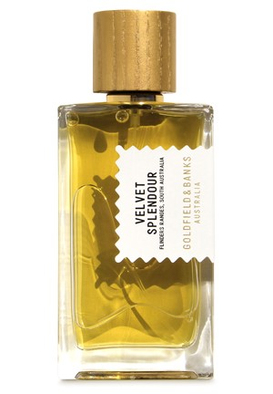 Velvet Splendour Perfume Concentrate by Goldfield & Banks