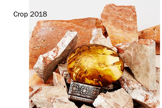 1 - product/76425/crop-2018-by-the-house-of-oud